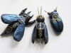 Winged clockwork Beetle bugs
