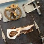 clockwork and bone detail